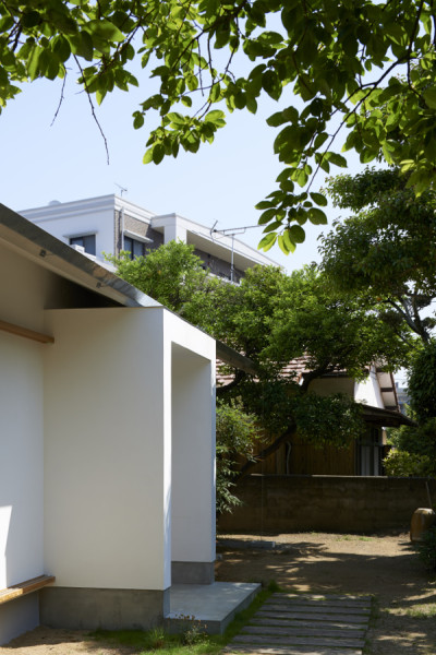 libraryhouse_t01